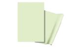 Aluminiumplatte und Folie, langnachleuchtend (Maße (BxH)/Material: 620x420mm/Folie, selbstklebend (Art.Nr.: 38.7520))