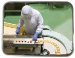 Industriespiegel Vialux® für spezielle Umgebungen, Edelstahl, gem. CE-Kennzeichnung Nr. 852 / 2004 (Halterung: Universal-Halterung aus Stahl (Art.Nr.: 20024))