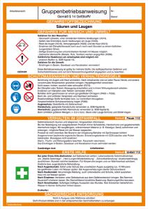 Gruppenbetriebsanweisung Säuren und Laugen (Ausführung: Gruppenbetriebsanweisung Säuren und Laugen (Art.Nr.: 43.b2020))