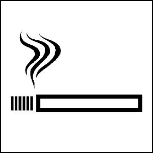 Hinweisschild zur Betriebskennzeichnung Rauchen gestattet (Ausführung: Hinweisschild zur Betriebskennzeichnung Rauchen gestattet (Art.Nr.: 21.5093))