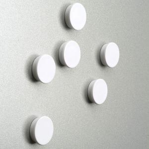 Magnet mit Kunststoffkappe (Größe: Ø 25 mm (Art.Nr.: 103000103-w))