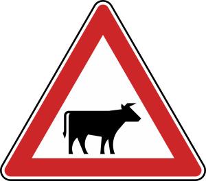 Verkehrszeichen 101-22 StVO, Viehtrieb, Aufstellung links (Seitenlänge/Folie/Form:  <b>630mm</b>/RA1/Flachform 2mm (Art.Nr.: 101-22-111))