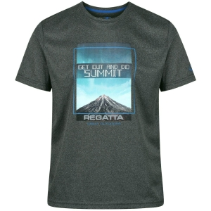 Regatta Fingal III Funktions-T-Shirt grau (Größe: L)