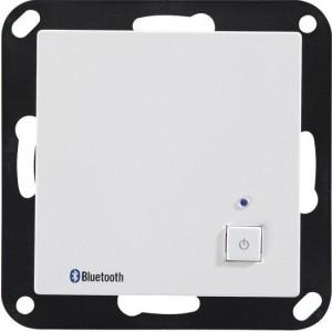 Bluetooth-Receiver BTR 55 MK 2 OPUS 55 polarweiß