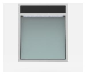 SANIT Betätigungsplatte LIS mit Beleuchtung Grundplatte Glas silbergrau Tastenpaar schwarz