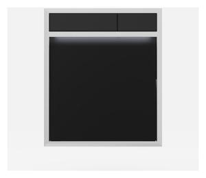 SANIT Betätigungsplatte LIS mit Beleuchtung Grundplatte Glas schwarz Tastenpaar schwarz