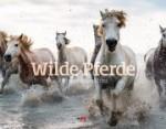 Wilde Pferde 2019