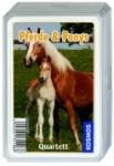 Pferde & Ponys Quartett