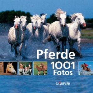 1001 Fotos - Pferde