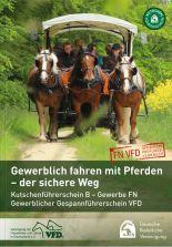 Gewerblich fahren mit Pferden - der sichere Weg