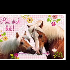 Pferdefreunde - Freundschaftskärtchen Hab dich Lieb!