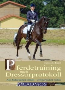 Pferdetraining nach Dressurprotokoll