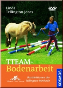 TTeam Bodenarbeit (DVD)