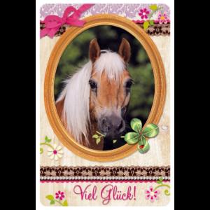 Pferdefreunde - Freundschaftskärtchen Viel Glück!