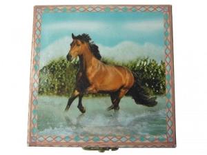 Zahndose Enchantmints, Pferde rennen im Wasser