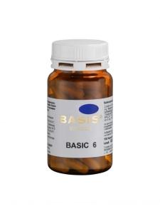 Basic-6-Kapseln (Größe: 100 Kapseln)