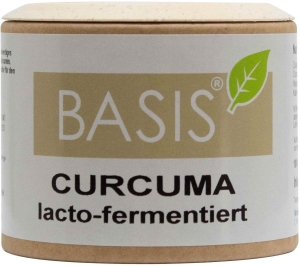 Curcuma (lacto-fermentiert) Kapseln (Größe: 100 Kapseln)