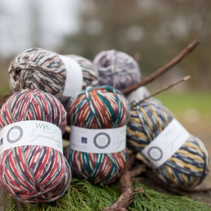 West Yorkshire Spinners Signature 4ply Country Birds (Farbe: Mallard)