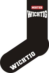 Socken FUN MISTER WICHTIG, Strümpfe mit witzigem Spruch, Fun Sox