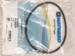 O-Ring für Dom Hayward S-200