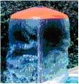 Wasserattraktion Pilz in 4 Ausführungen