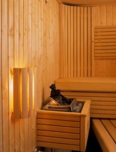 Sauna-Wandlampe mit Holzschirm (Sauna-Wandlampe: Wandlampe nur Ersatzholzschirm)