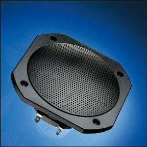 Breitbandlautsprecher FRS 10 WP für die Sauna (4) (Breitbandlautsprecher FRS 10 WP: weiß)