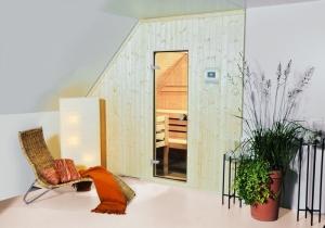 Elementsauna Perfekt, Tiefe 250 cm, Innenverkleidung Hemlock (Maßangaben in T 250 cm x B: 250 x 154 cm Breite mit Safor 7,5 kW)