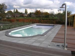Beckenrandsteine Napoli -  Einzelsteine für den Pool (Beckenrandstein Napoli mit Nase 60 mm: Gerader Stein 600 x 300 x 30 mm Farbe montain grey)