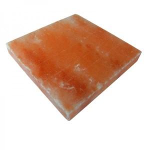 Salzziegel glatt, 20x20x5 cm (Salzziegel 20 x 20 x 5 cm: ab 125 Stk. (= 5 m²) Preis je Stück)
