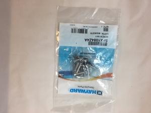 Schraubenset  SP1084-Z-4_A für Skimmer Hayward