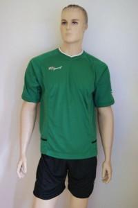 Royal-Trikot-Set - FENIX - Fußball Trikot u. Hose grün / schwarz (Größe: XL)